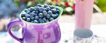blueberries,anti aging, anti oxidants, young, youthful, live longer, fresh