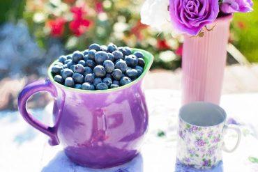 blueberries,anti aging, anti oxidants, young, youthful, live longer, fresh
